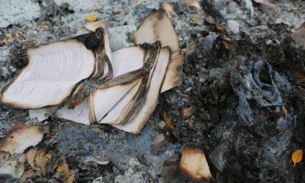 B(r)uchstücke XI – Verbrannte Bücher