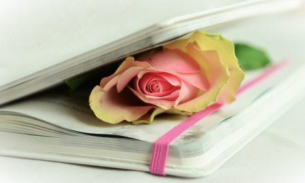 B(r)uchstücke der Literatur XXI – Poesie!