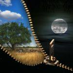 B(r)uchstücke XXVIII – Tag und Nacht